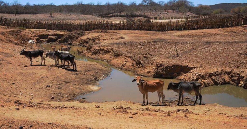 Resultado de imagem para seca na bahia